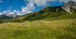 Der Parco regionale dell'Adamello ist ein Naturpark in den Südalpen in der italienischen Provinz Brescia der Lombardei.